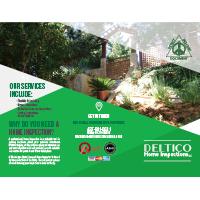 Deltico Home Inspection Brochure